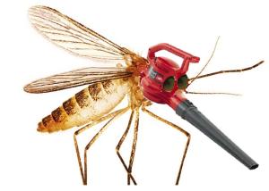 mosquito blower